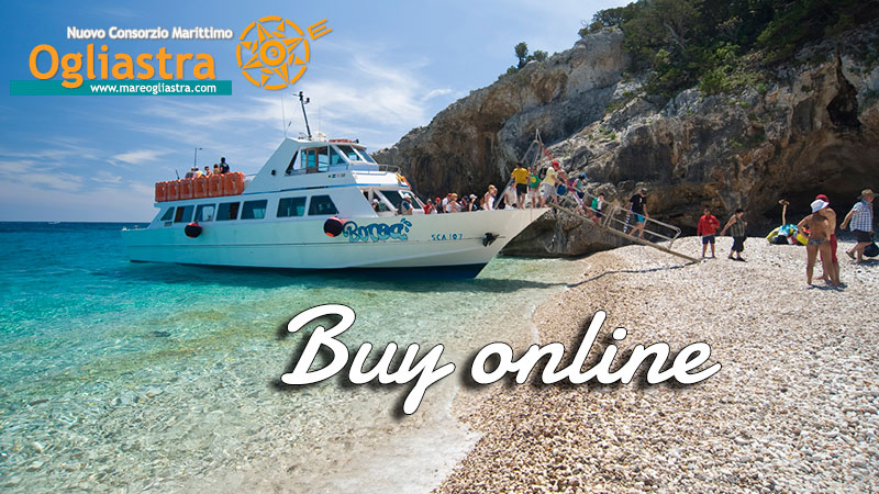 Booking your ticket online